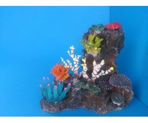 Скала QA-003 с кораллами