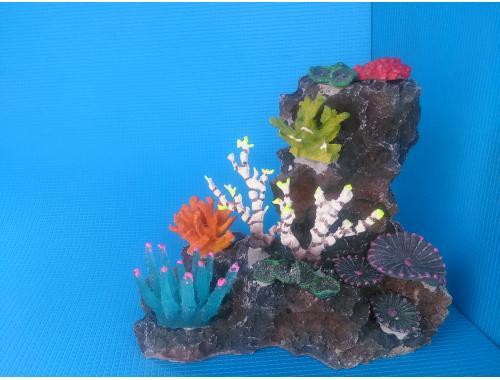Фото Скала QA-003 с кораллами aquasnag.com